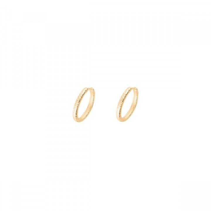 Gold-plated small textured hoop earrings
