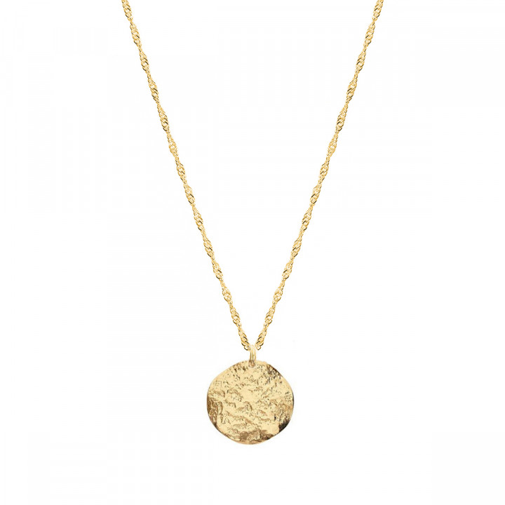 Gold-plated twisted chain necklace & small Atlas medal