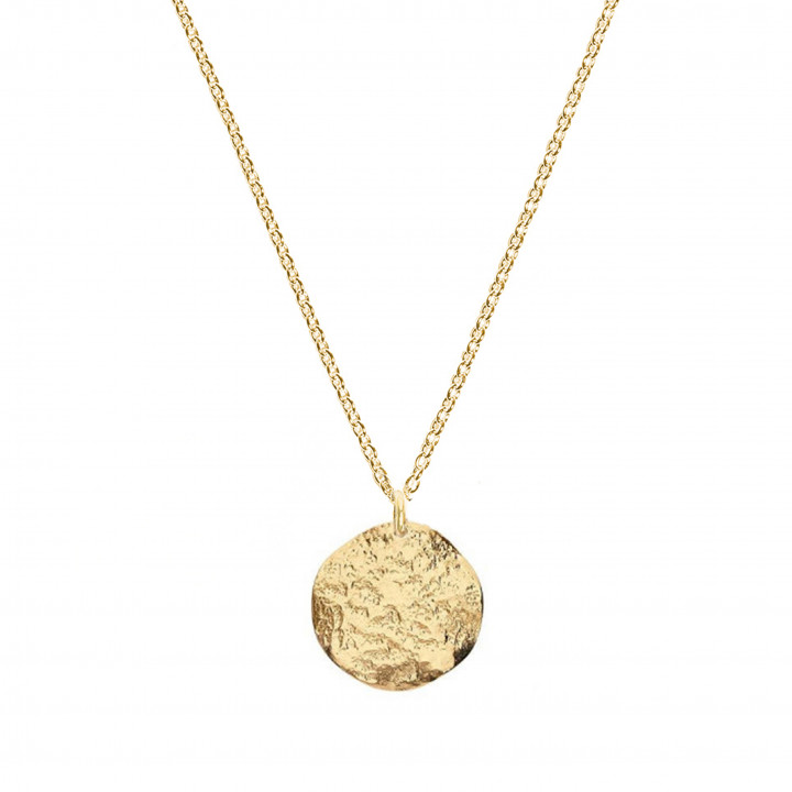 Gold-plated small Atlas medal chain necklace
