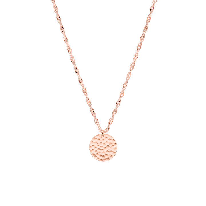 Rose gold-plated twisted chain necklace & small hammered medal