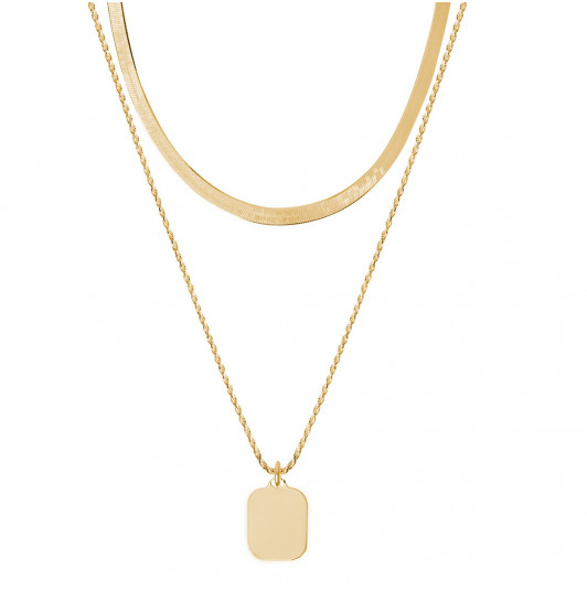 Two row snake chain necklace with rectangular medal