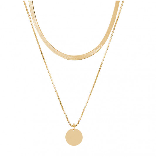 Two-row small snake mesh necklace & medal